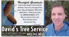 Heartfelt Gratitude from David's Tree Service