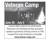 Summer Bible camp for the whole family