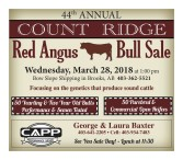 44th ANNUAL COUNT RIDGE Red Angus Bull Sale