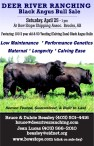 DEER RIVER RANCHING Black Angus Bull Sale
