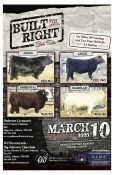 Built Right 7th Annual Bull Sale