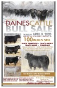 25th Annual Daines Cattle Bull Sale